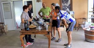 Wine and Cycle tour